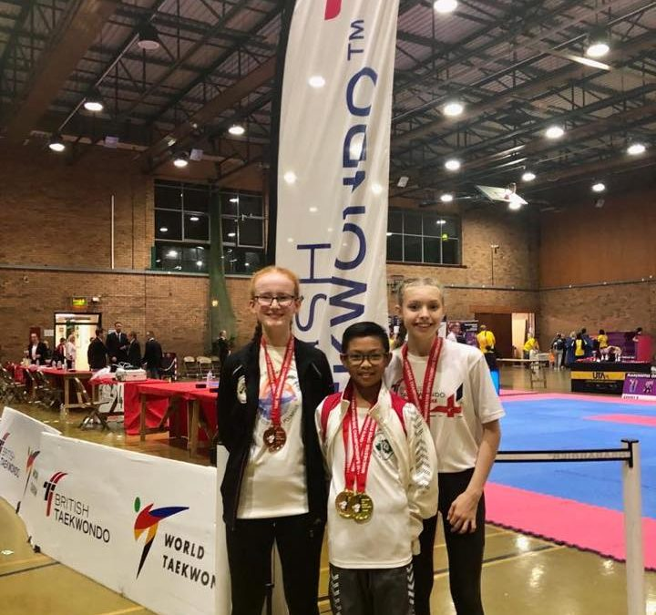 Lisburn TKD wins 10 medals at Manchester Open